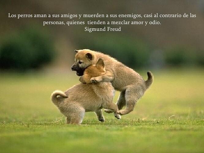 Sobre+Los+Perros+Y+Las+Personas