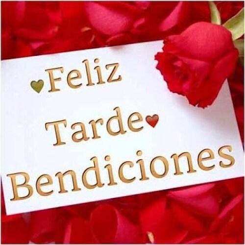 Imagenes De Rosas Para Desear Feliz Tarde En Facebook